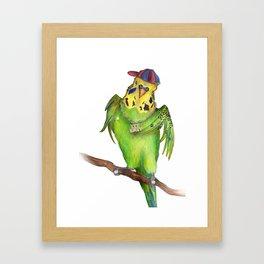Budgie Rap Framed Art Print