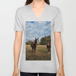 Two Horse Amigos in Pasture Unisex V-Neck