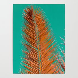Minimal poster. leaf of palm tree in pastel colors (blue and orange) Poster