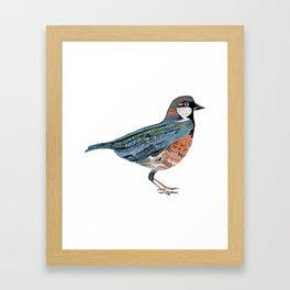 Typographic Sparrow Framed Art Print