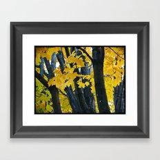 gold and black forest Framed Art Print