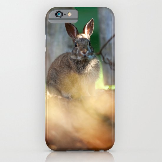 Backyard Friend iPhone & iPod Case