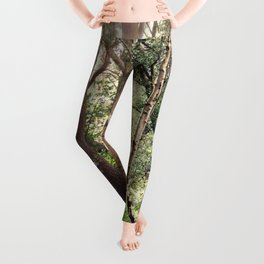 Through the Trees Leggings