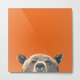 Bear Orange Metal Print