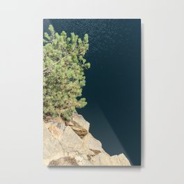 Tree And Rock And Water Metal Print