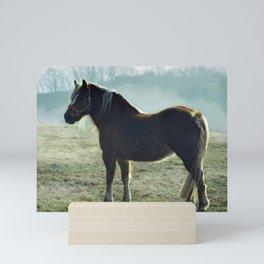Beautiful Horse Mini Art Print