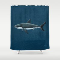 biology Shower Curtains featuring Carcharodon carcharias  ~ Great White Shark by Amber Marine