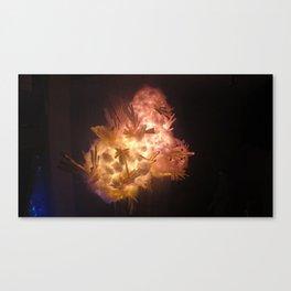 Frozen Explosion Canvas Print