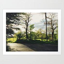 Across the road Art Print