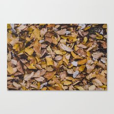 Days of the fall Canvas Print