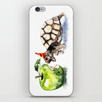 turtle iPhone & iPod Skins featuring Turtle by Anna Shell