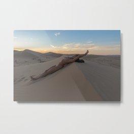 A Desert Repose Metal Print