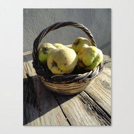 Golden Apples of the Sun Canvas Print