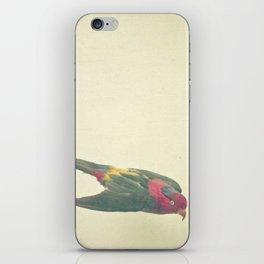 Bird Study #4 iPhone Skin