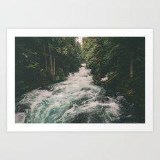 Mckenzie River Art Print