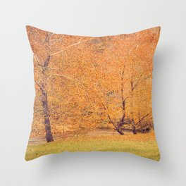 Autumn Landscape -- Trees By The River Throw Pillow