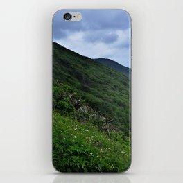Verdant Coast iPhone Skin