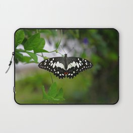 Butterfly Medium Laptop Sleeve