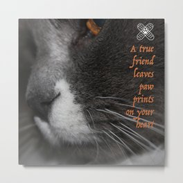 My Friend Boots  Metal Print