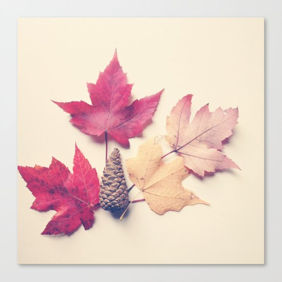 Red Maple Leaf Collection Canvas Print