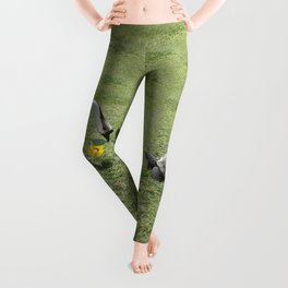 The Turtle and the Goose Leggings