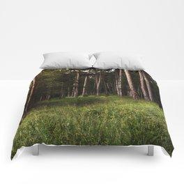 Forest Wander Comforters