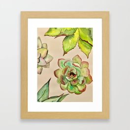 Cactus Plants Framed Art Print