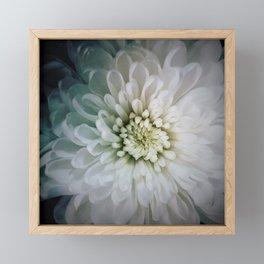 flower glow Framed Mini Art Print
