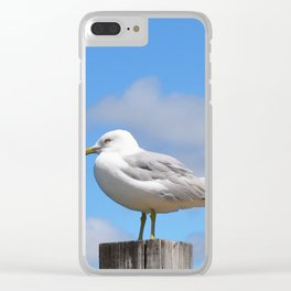 Seagull Bird Beach Art - Sitting Pretty - Sharon Cummings Clear iPhone Case