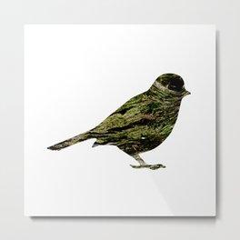 olive tree sparrow Metal Print