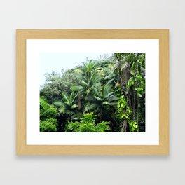 Hawaiian Rainforest Framed Art Print