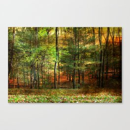 Autumn Sunset - In The Woods Canvas Print
