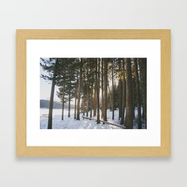 Lake side Framed Art Print