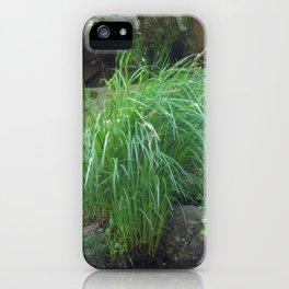 Mellow romantic landscape spring river stones iPhone Case