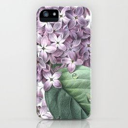 Nature, botanical print, flower poster art of Lilac iPhone Case