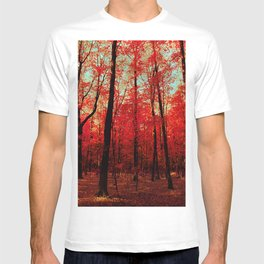 True North T-shirt