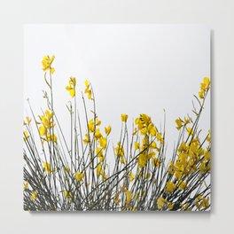 Minimal Garden -Yellow Version - Black Stems with Yellow Petals On White #decor #society6 #buyart Metal Print