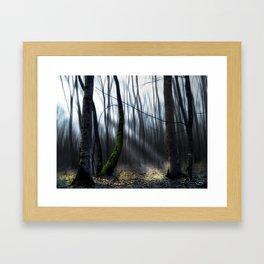 Searching the light Framed Art Print