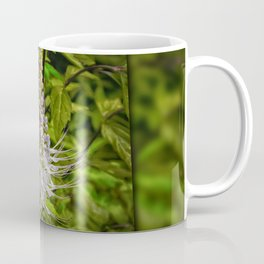 Cats Whiskers flower Coffee Mug