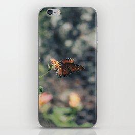 Grainy Monarch iPhone Skin