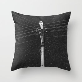 Forgetting the Big Picture and Making it Wallet Size Throw Pillow