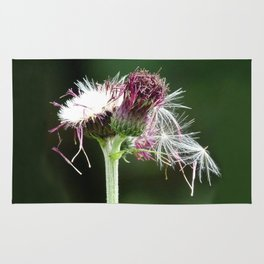 Thistle Seedhead Rug