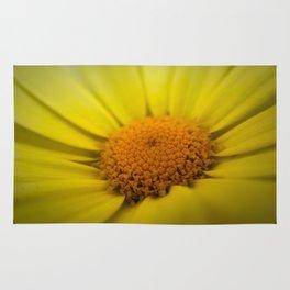 Macro Sunflower Rug