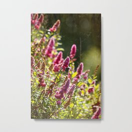 Wildflowers. Metal Print