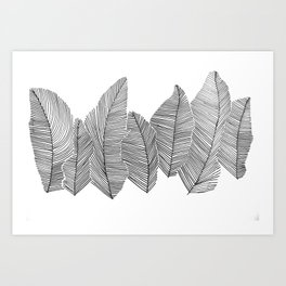 drawn feathers Art Print