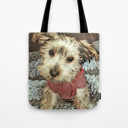 Louis the Yorkshire Terrier Tote Bag