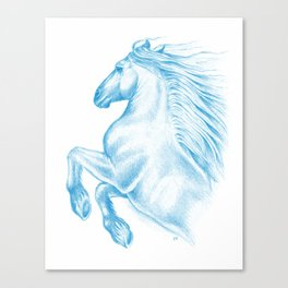 Horse In Blue Canvas Print