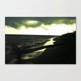 Golden Opportunity Canvas Print