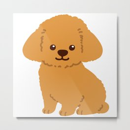 Fluffy Brown Toy Poodle Sitting Metal Print