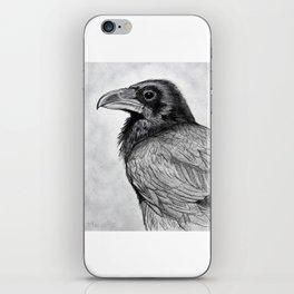 Corvus Corax (The Common Raven) iPhone Skin